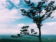 Mount Adaklu View