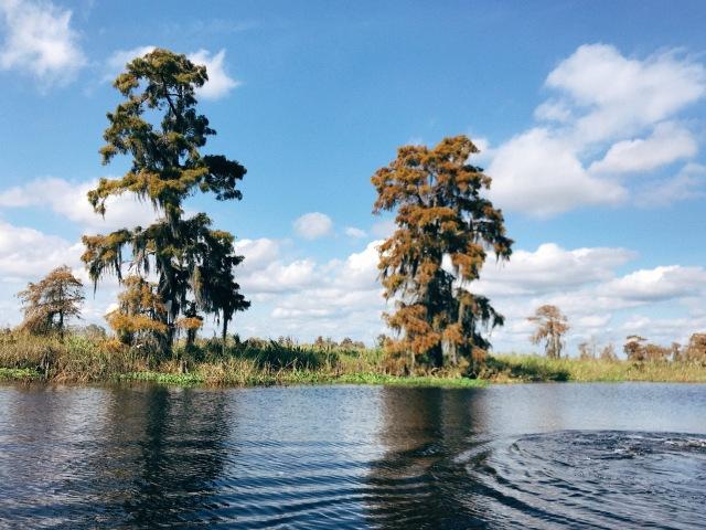 Lake Maurepas - Port Manchac Louisiana
